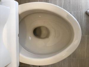 ガラスコートされたトイレ便器