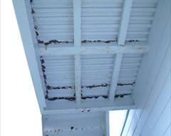 塗装前の階段裏の鉄部